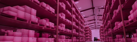 SAFE STORAGE AND WAREHOUSING